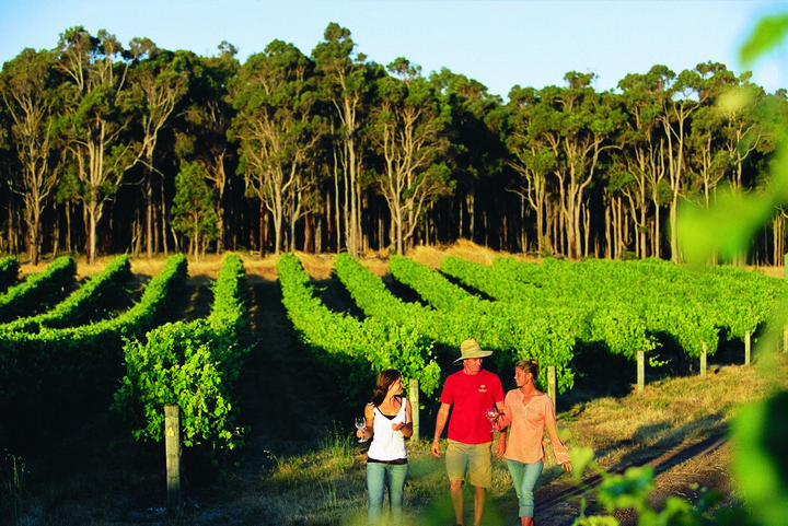 Margaret-River-Wine-Region